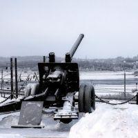 Пушка (шекснинская достопримечательность) с видом на федеральный мост, Шексна
