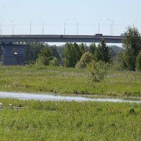 Мост через Шексну, Трасса А114 Вологда-Новая Ладога, Шексна