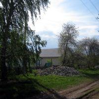 ул. Некрасова, Анна