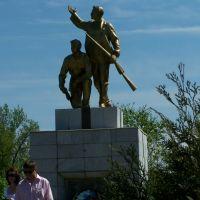 Памятник, г. Богучар, Богучар