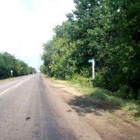 Богучарский район, 32 км (08.2011), Богучар