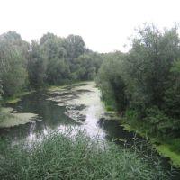 Река Осередь, Бутурлиновка