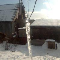 Сосулька на виноградной лозе, Бутурлиновка