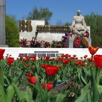 Памятник погибшим воинам в ВОВ, Бутурлиновка
