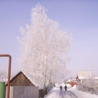 ул.8 марта., Бутурлиновка