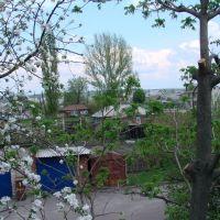Вид из окна, Бутурлиновка