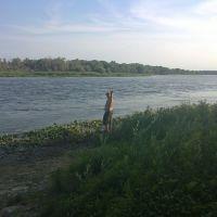 Есть рыбка в Дону(В.Мамон), Верхний Мамон