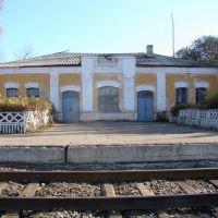 вокзал Лещаная, Воробьевка