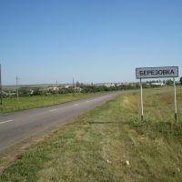 Березовка, Воробьевка
