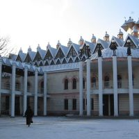 Театр кукол «Шут». Воронеж. Россия, Воронеж