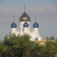 Храм Владимирской иконы Божией матери., Лиски