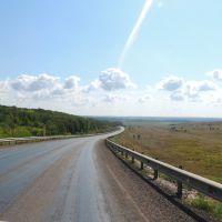 Спуск к Савале, Грибановский