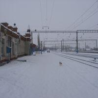 станция, Давыдовка