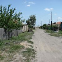 Sholokhova street, 2010, Елань-Коленовский