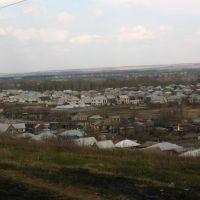 Вид из Берёзовой рощи, Калач