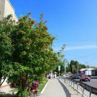 Центральная улица города, Калач