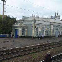 ст.Кантемировка (вид из поезда), Кантемировка