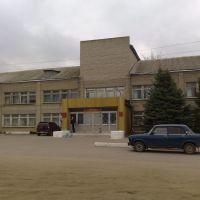 ЦРБ, Нижнедевицк