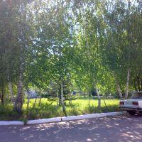 Нижнедевицкая ЦРБ (двор), Нижнедевицк