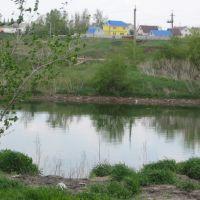 Прудик, Новая Усмань