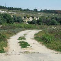 Дорога из Заболотовки в Ремезево, Ольховатка