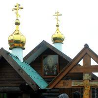 купола, Острогожск