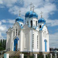 Панино. Церковь Казанской иконы Божией Матери, Панино