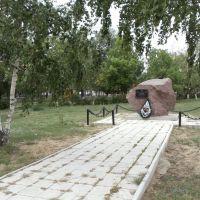 камень, Петропавловка