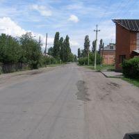 Переулок Школьный, Поворино