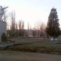 Комсомольская площадь 23 декабря 2012г.Ёлка есть,а снега нет.., Поворино