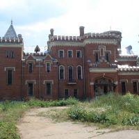 Великолепный замок Ея Императорского Высрчества Принцессы Ижены Максимилиановны Ольденбургской, Рамонь