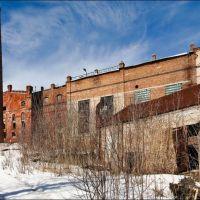 Заброшенный сахарный завод, Рамонь