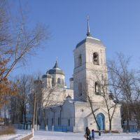 Церковь св. апостолов Петра и Павла 1877г., Репьевка