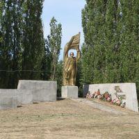 Памятник воинам 1941-1945 село Репьёвка .Monument 1941-1945 Village Repevka, Репьевка