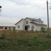 Дом, Репьевка