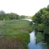 Река Потудань .     river Potudan, Репьевка