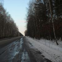 По дороге от Репьевки к Солдатскому..., Репьевка