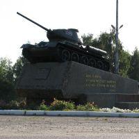 Памятник танкистам 1941-1945 село Репьёвка .Monument tankers 1941-1945 Village Repevka, Репьевка