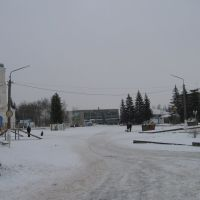площадь 2013, Репьевка