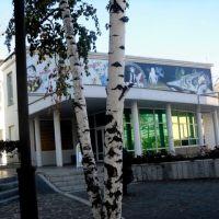 Кинотеатр Мир, Россошь
