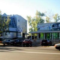 Кинотеатр Мир и банк, Россошь