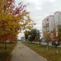 ул. Простеева, Россошь