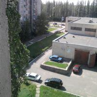 ул.Простеева, смотрю из окна, Чаплиев АЛ, Россошь