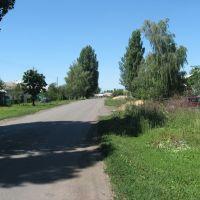 Улица Кирова ( 8 июля 2008г.), Таловая