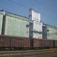 Grain elevator, Таловая