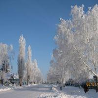 ул. Пролетарская 246, Таловая