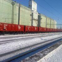 Новенькие вагоны на станции Таловая, Таловая
