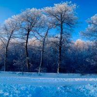 Улица Ягодная зимой, Терновка