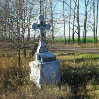 """Исторический памятник ...якобы был  посвящен роднику """"Дива"""", Хохольский"""