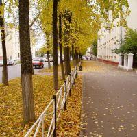 Проспект Ленина, Саров